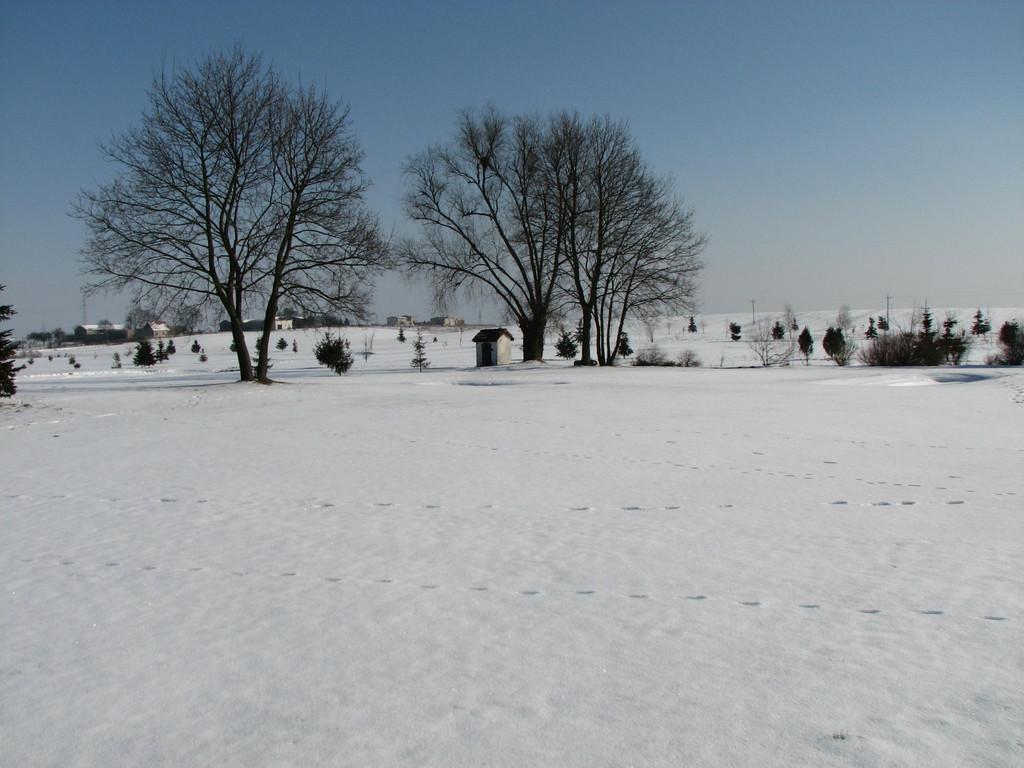 """Kilka ciepłych dni na początku lutego dało nadzieję na szybki koniec zimy. Ostatnie dni ją pogrzebały, oferując w zamian śnieg i mróz. Tak w tej chwili wygląda pole: <a href=""""http://golf-olszewka.pl/wp-content/uploads/2011/02/img_2709.jpg""""></a>"""