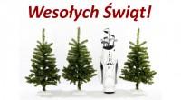 Spokojnych i rodzinnych Świąt oraz całej masy golfowych prezentów pod choinką życzy ekipa Pola golfowego w Olszewce.